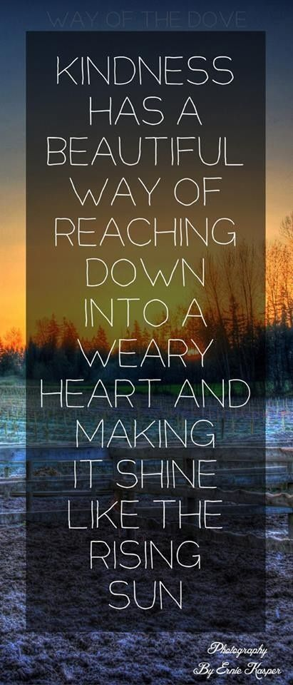 """""""Kindness has a beautiful way of reaching reaching down into a weary heart and making it shine like the rising sun"""