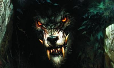 Digital Evil Wolf (click to view)