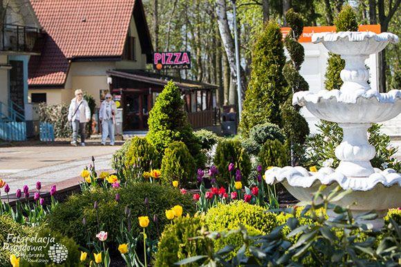 Wiosna w Pobierowie | fotorelacja.com