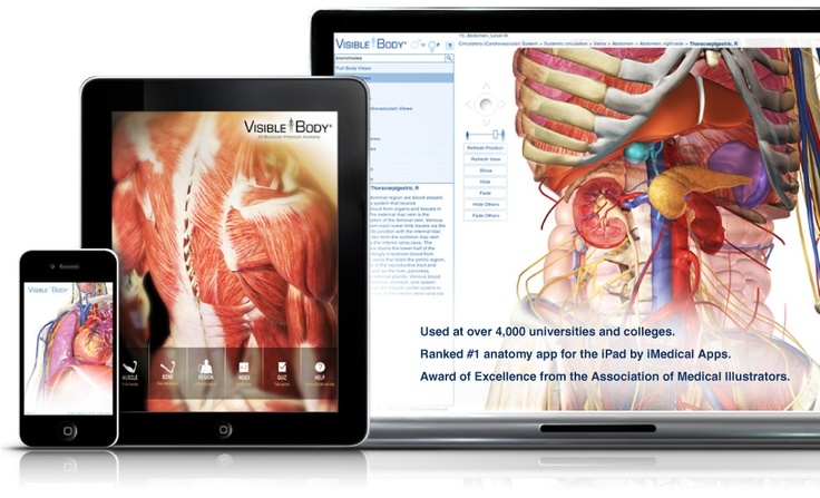 Abcs helps students of anatomy recall
