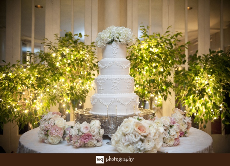How Lighting Can Affect Your Wedding: 12 Best Images About Lit Ficus Tree Project On Pinterest