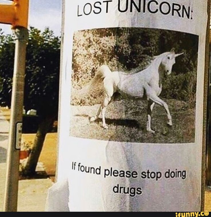 1000 Ideas About Love Memes For Him On Pinterest: 1000+ Ideas About Unicorn Memes On Pinterest