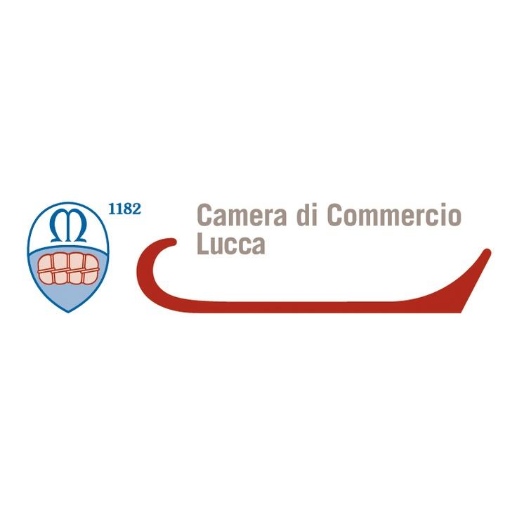 Camera di Commercio Lucca (2012) - art: Domenico Raimondi (thesignLab)