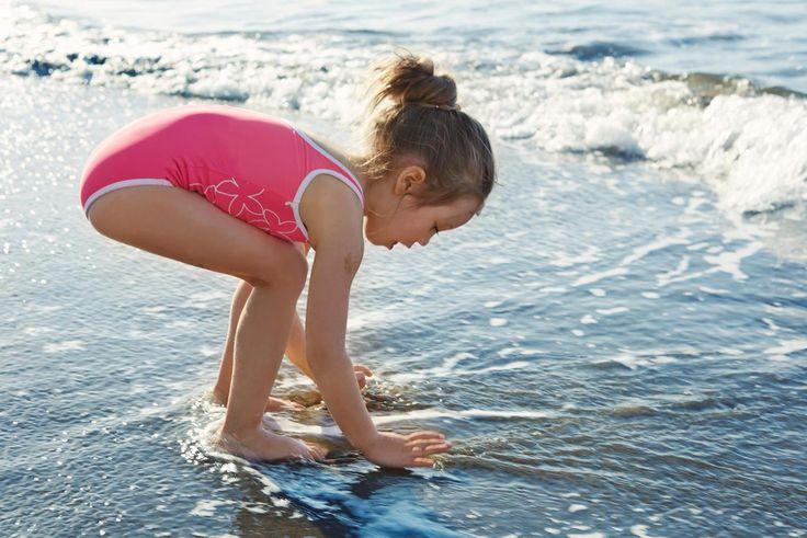 584415 Finding seachells