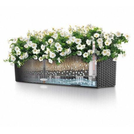 Lechuza Balconera Cottage 80 virágláda   Ezekben a ládákban napokra magukra hagyhatja balkonnövényeit, az önöntöző rendszer gondoskodik róluk.