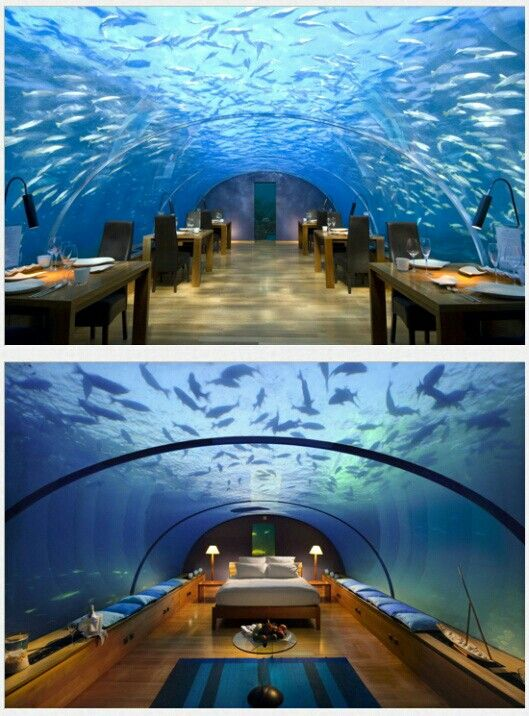 17 best images about unusual weird bizarre hotels for Unusual hotels in dubai