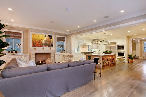 Open Concept Living Room Kitchen Design, Pictures, Remodel, Decor and Ideas - page 4