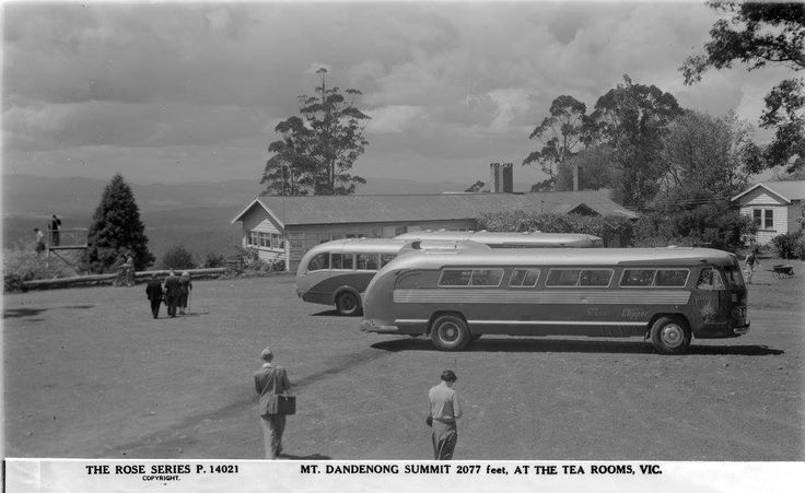"""Clipper"" buses at the top of Mount Dandenong in the 1950s"
