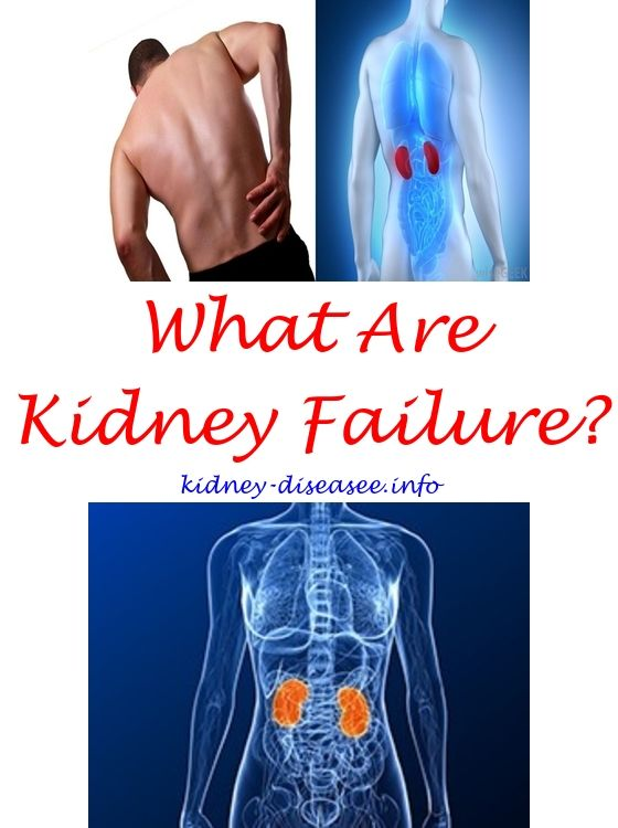 kidney disease young cats - kidney cancer essential oils.will kidney disease show up ultrasound 4725663109