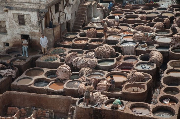 Tannery, Fez, Morocco.