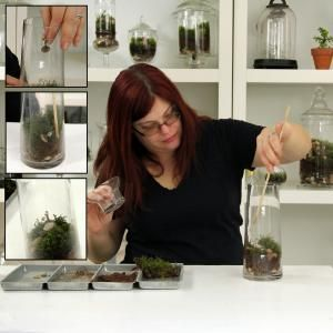 The ladies of Brooklyn's Twig Terrariums give detailed how-to instructions for making your own moss terrarium.