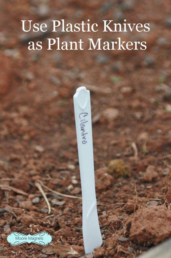 DIY Plant Markers using plastic knives for low cost.