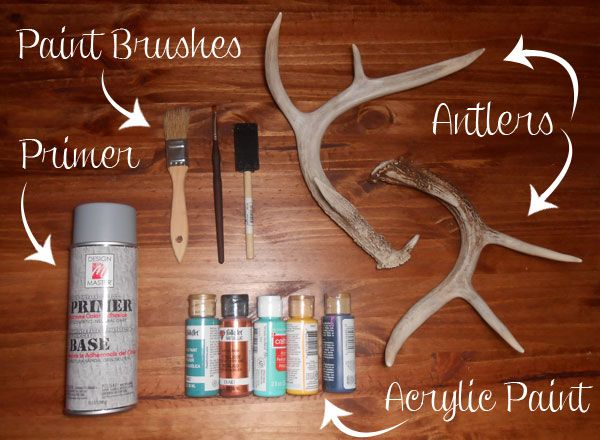 Painted Antlers Materials