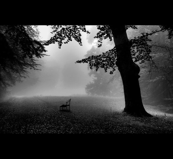 Empty Bench by Maria , via 500px