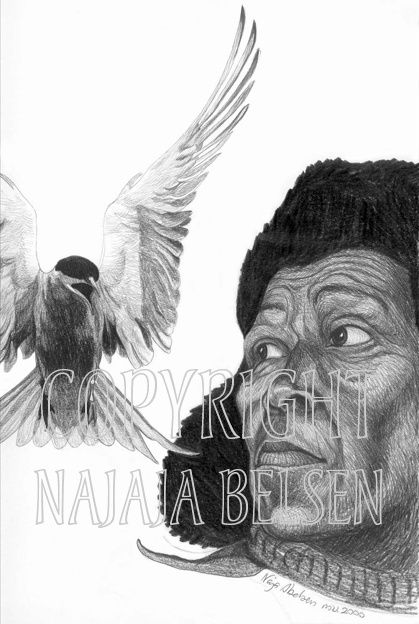 The Artic Tern defends itself. Pencil drawing by Naja Abelsen. HUMANIMAL - www.123hjemmeside.dk/NajaAbelsen. Original for sale. Available as A3-photoprint 400 DKK / 54 Euro.