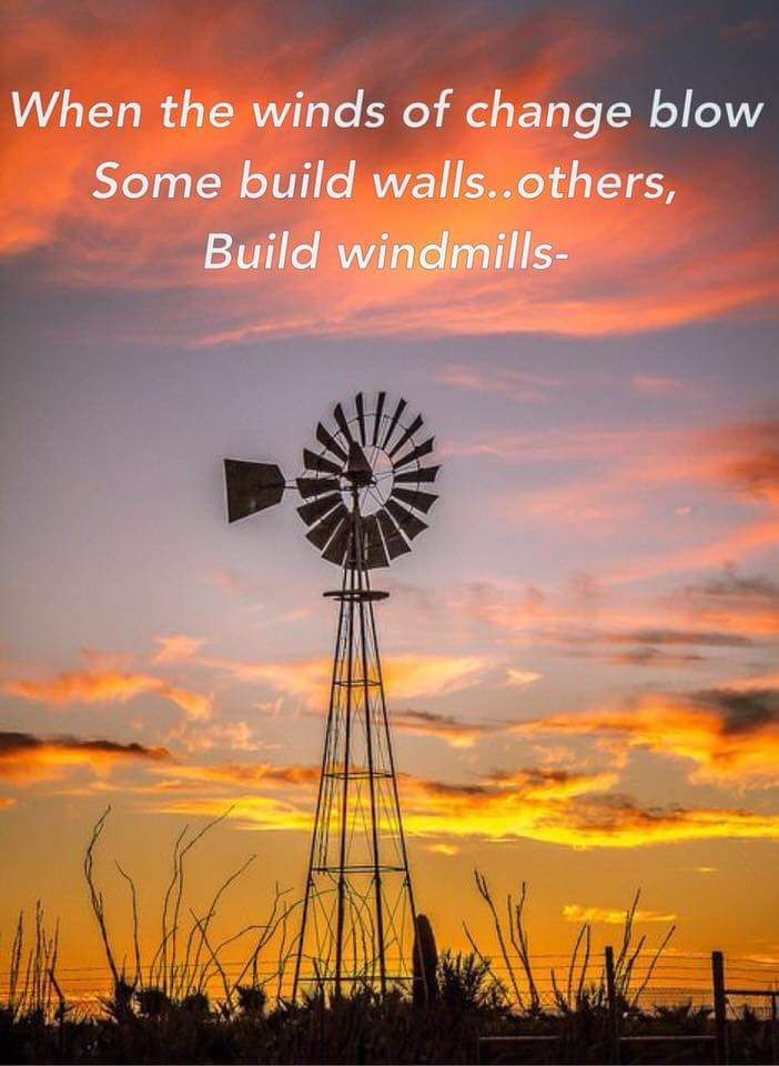 Windmill quote when the winds of change blow do you build a wall or a windmill? Proverb added the quote silhouette of windmill and sunset