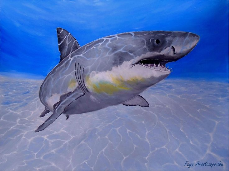 Shark, painting,  underwater,world,scene,fish,wall,art,ocean,life,blue,nature,sea,great white shark,tropical,deep,ocean,saltwater,light,illumination,patterns,wildlife,home,office,decor,beautiful,awesome,artwork,modern,aqua,blue,turquoise,beautiful,images,fine,art,oil,contemporary,realism,items,ideas,for sale,redbubble
