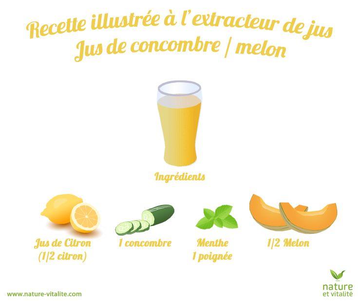 Les melons sont délicieux cette année, profitez-en pour en faire des jus rafraîchissants, notamment grâce à cette recette illustrée que vous pourrez facilement réaliser avec votre extracteur de jus. Afin de préserver votre appareil, ne passez pas la peau dure et les pépins du melon. Vous pourrez rajouter le jus de citron en fin de préparation, directement dans votre jus.
