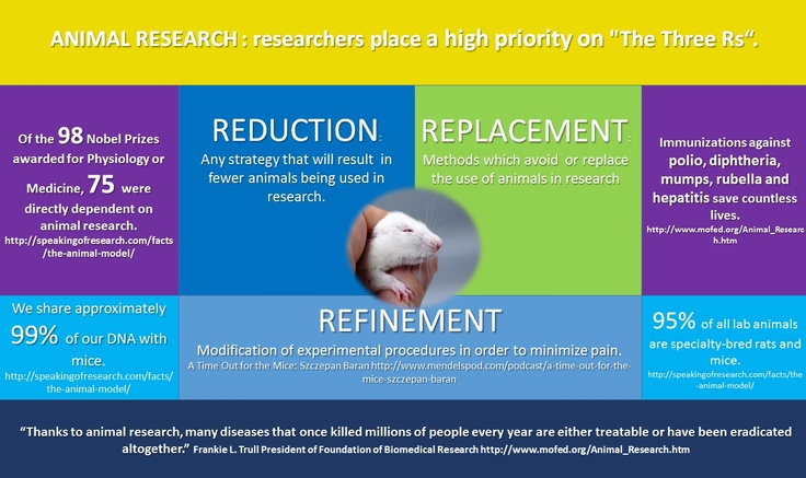 Animal Research and the Three Rs (Reduction, Refinement