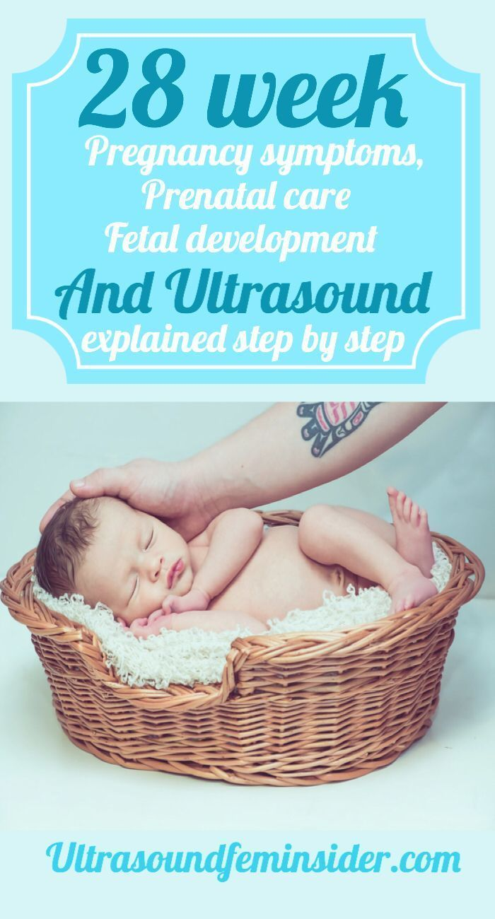 All you want to know about your 28-week pregnancy, your fetal development …   – Motherhood Journey