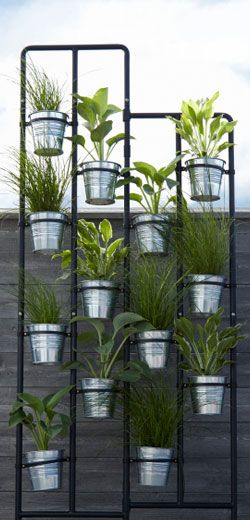 die besten 25 h ngende pflanzen ideen auf pinterest h ngepflanzen zimmer h ngepflanzen und. Black Bedroom Furniture Sets. Home Design Ideas