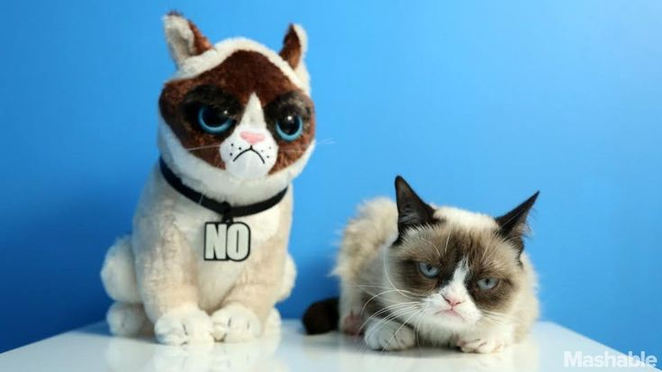 """Even the biggest Scrooges won't be able to say """"Bah, Humbug!"""" at this adorable line of Grumpy Cat plushes."""