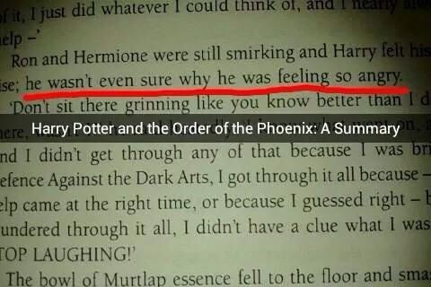 Order of the Phoenix: A summary