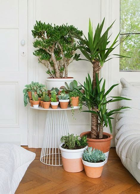 Yaaaas. I love how purposeful this looks. The scattery plant rooms look cluttered to me.