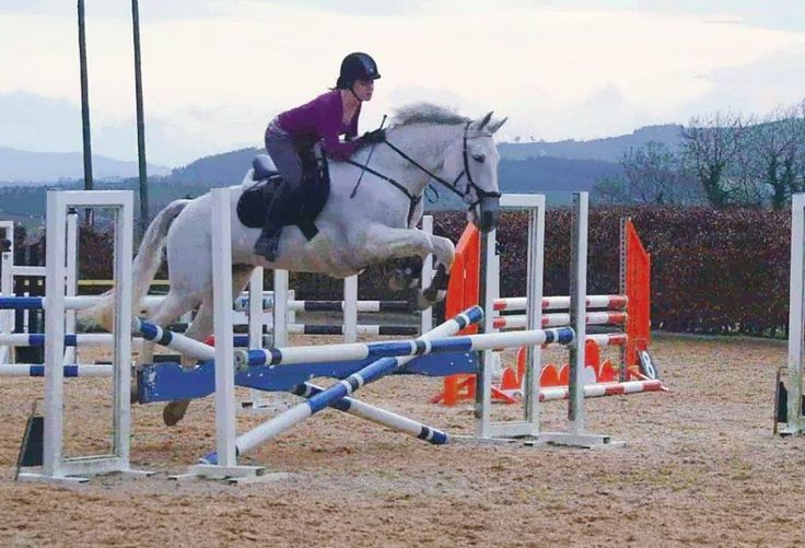 Lesson report from a showjumping clinic with Peter O'Toole at his yard on Ballinteskin Farm in Wicklow - arranged by the AIRC South Leinster Region.
