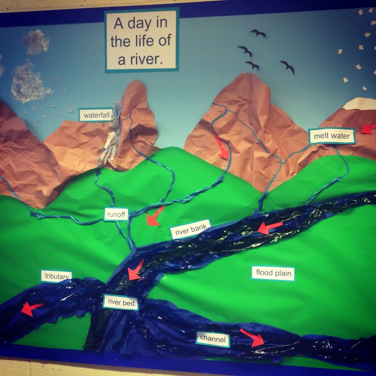 Classroom Ideas For Kindergarten ~ A day in the life of river display board cycle