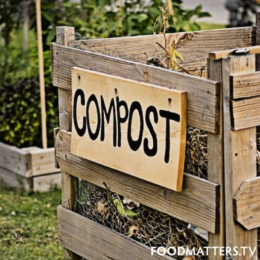 FM tip - Having a garden gives you a means of re-using natural waste such as eggshells, apple cores, coffee grinds as well as yard waste which many people throw away. You can either purchase or make a compost bin to turn this organic material into gardening gold which can be used to help your plants grow! Love Mother Nature!