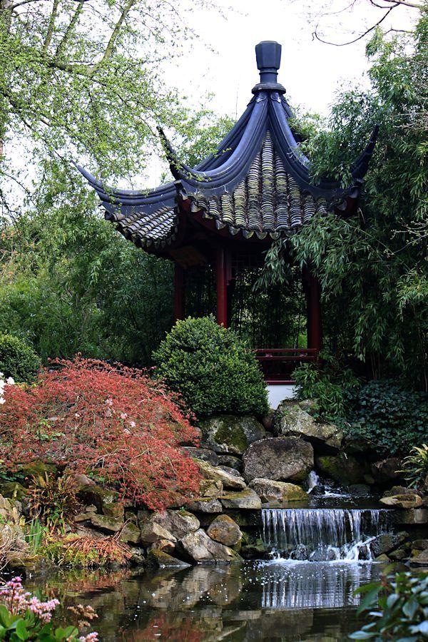 Chinese tuin Blijdorp Zoo