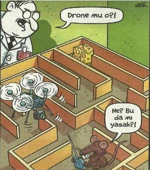 Drone mu o fare karikatürü