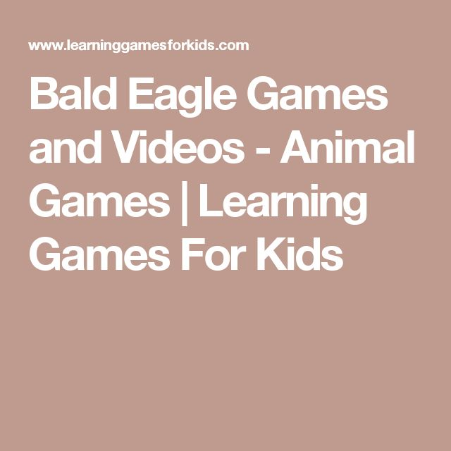 Bald Eagle Games and Videos - Animal Games | Learning Games For Kids