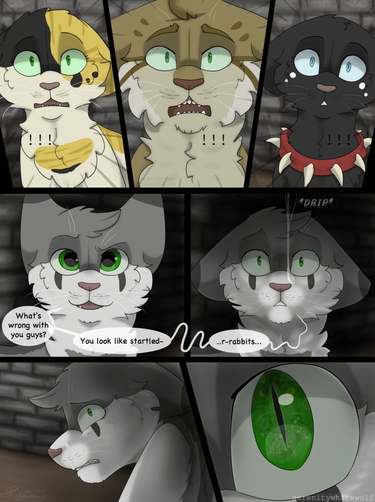 Warriors- Eyes of a Raven- Page 81 Next:serenitywhitewolf.deviantart.c… Previous: First:E.O.A.R- Cover (REDO) .o. .0. .O. Random early pages are coming out of n...