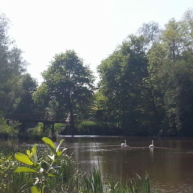 'Love' op de Westerwoldse Aa, zo mooi om te zien vanaf je kampeerplaats.
