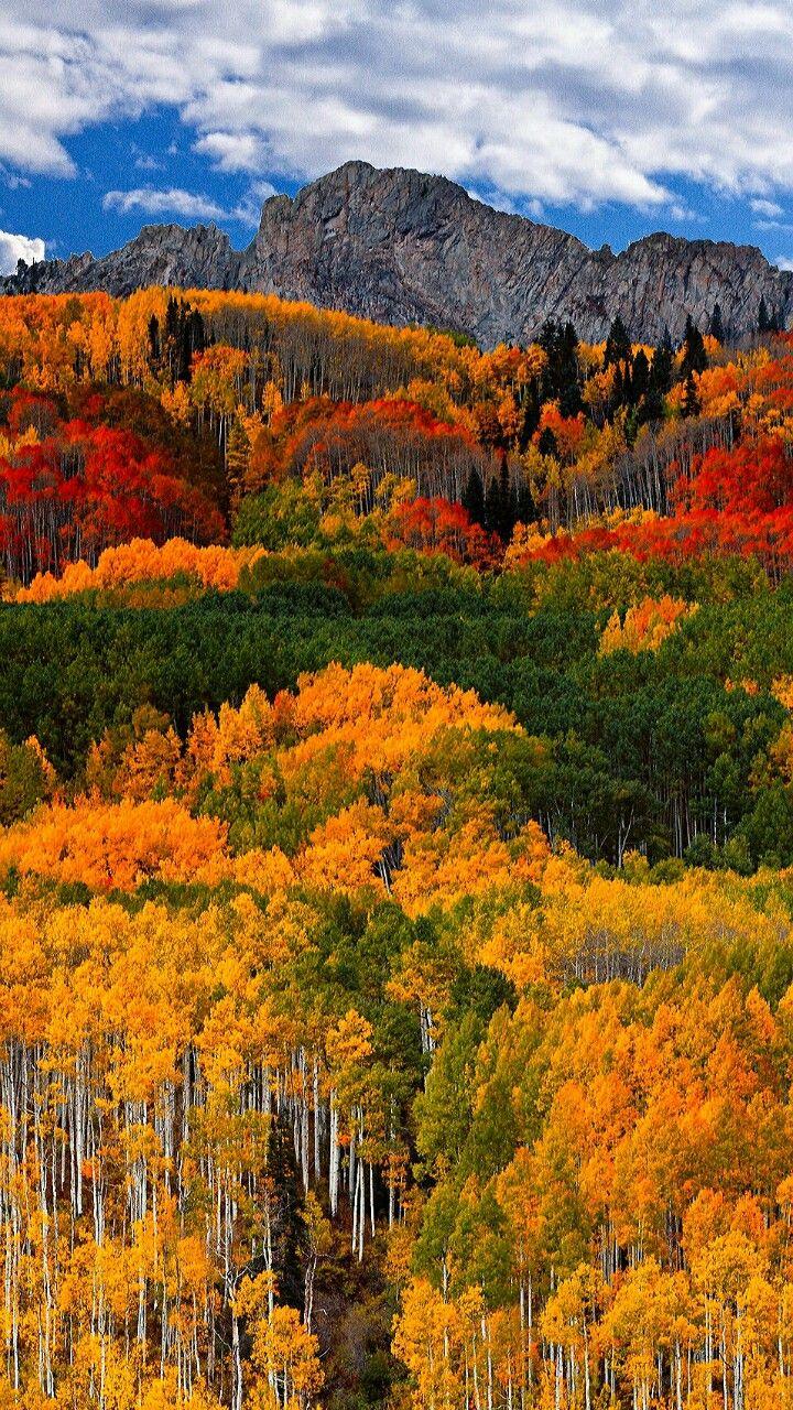 Autumn rainbow (for R) in 2019 | Autumn scenery, Fall ...