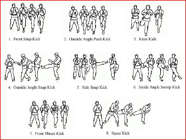 Isshin Ryu Chart 2. How to work the Isshinryu Karate Basics. Isshinryu's 15 Basic lower body-conditioning exercises and kicking techniques ...