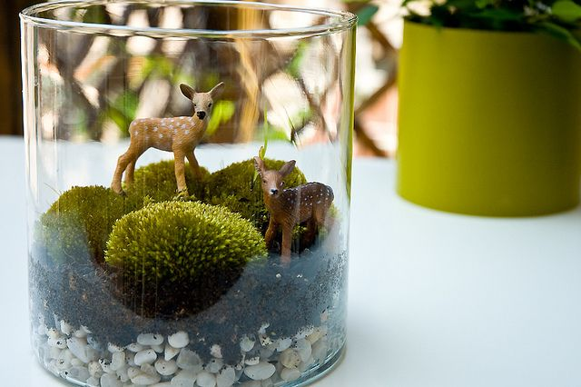 Moss and deers ♥ by ::sämyii::, via Flickr