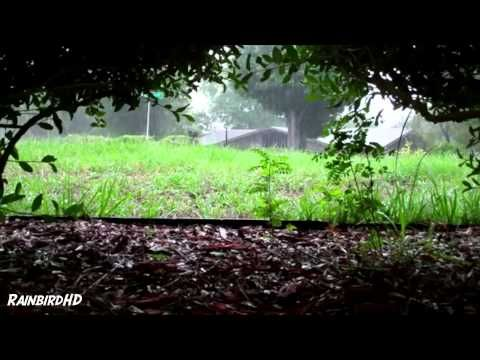 ▶ Rain and Thunder Sounds 2 Hours High Quality HD 1080p - YouTube