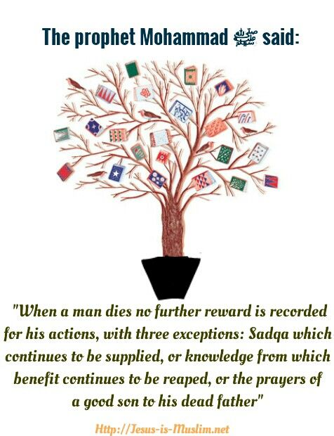 Hadith about things thst give you reward after death. #Hadith #Mohammad #messenger #Islam # prophet # Son #died #reward #charity #knowledge #teaching Http://jesus_is_muslim.net