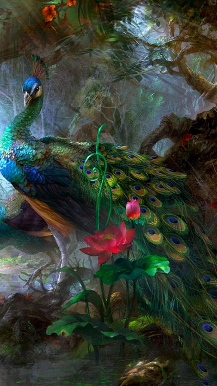 Colorful Peacock Wallpaper Iphone 2019 3d Iphone Wallpaper Peacock Painting Peacock Wallpaper Peacock Wall Art