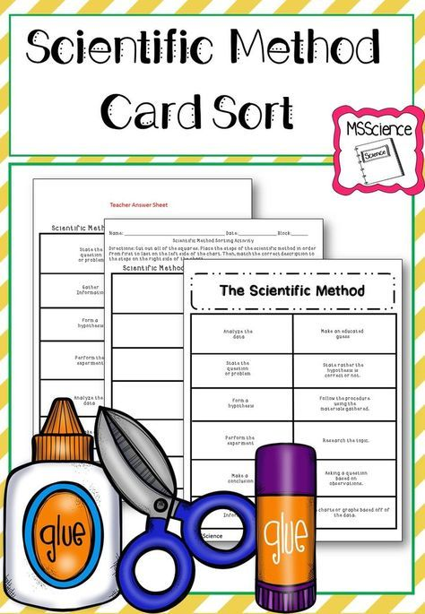 This is a wonderful cut and paste sorting activity on the scientific method. Use this in your middle and high school science classes. Go grab this great resource now!