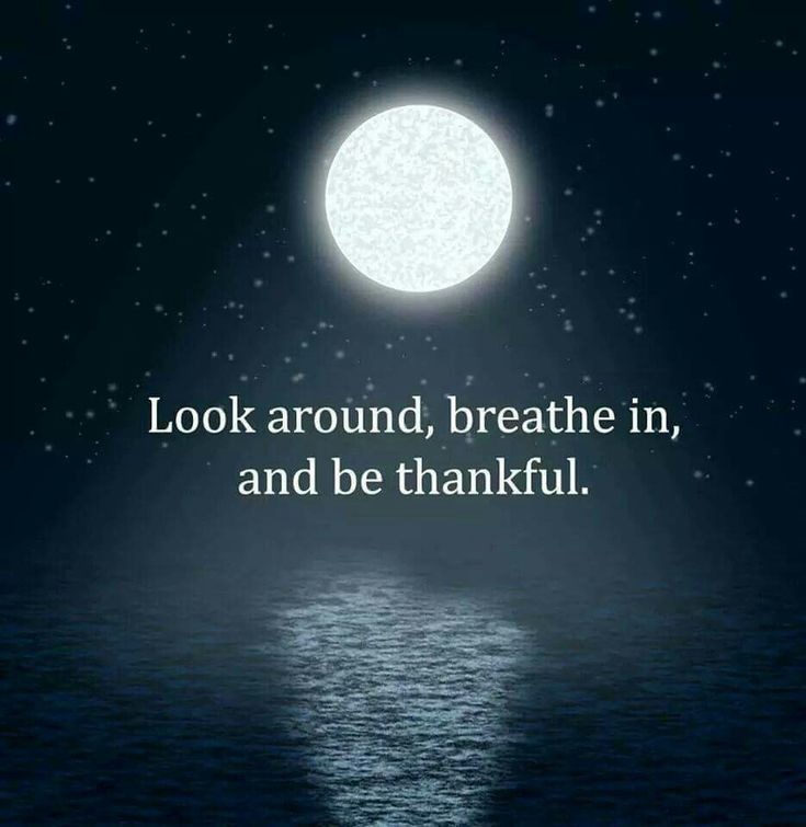 Look around, breathe in, and be thankful.