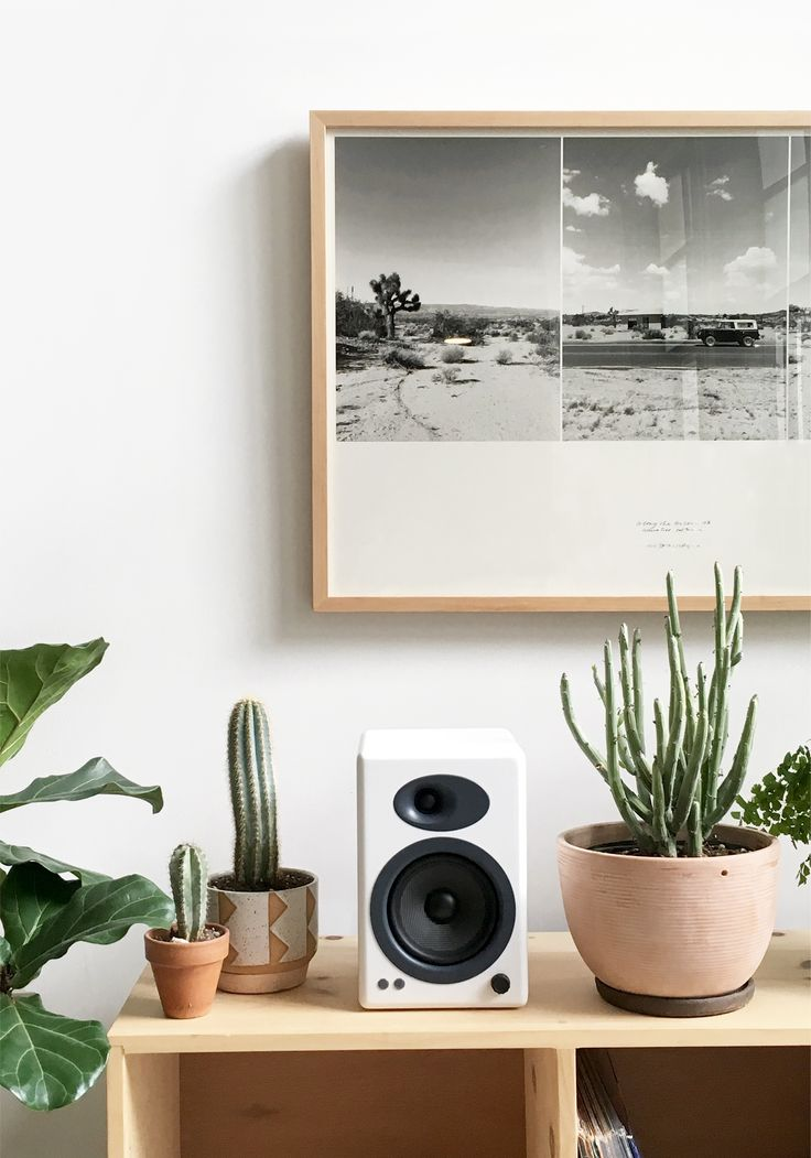 Audioengine A5+ speakers