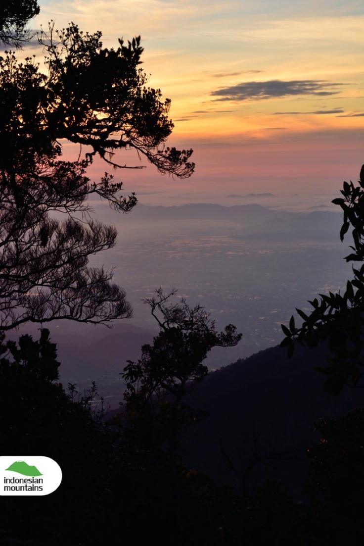 Peeking sunrise at Pangrango's peak