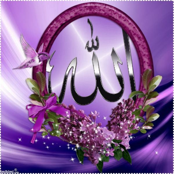 Beauty In Frame: 227 Best Images About ALLAH On Pinterest