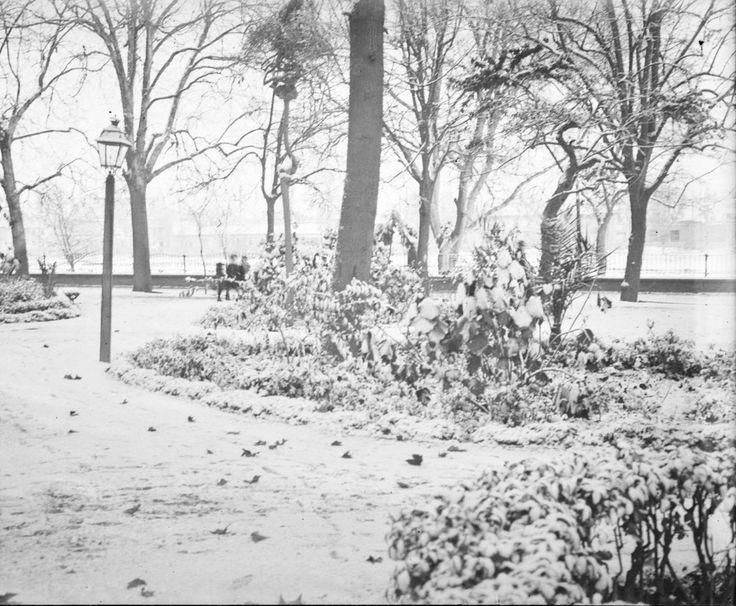 Nieve en las Alameditas, en la ciudad de Valencia, el 30-12-1917. Fotografía de José Roglá Alarte (1850-1935) Colección de fotografías de Valencia. Donación Familia Roglá