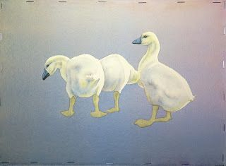 Studio at the Farm: Goslings Waddling along Nicely ... Baby Geese - Wo...