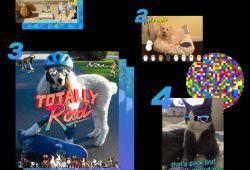 Sitio del día: GIF Editor, una nueva forma de comunicar
